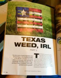 texas weed 1